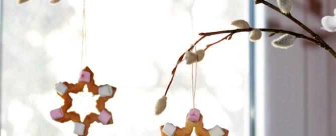 biscotti-effetto-vetro-per-natale