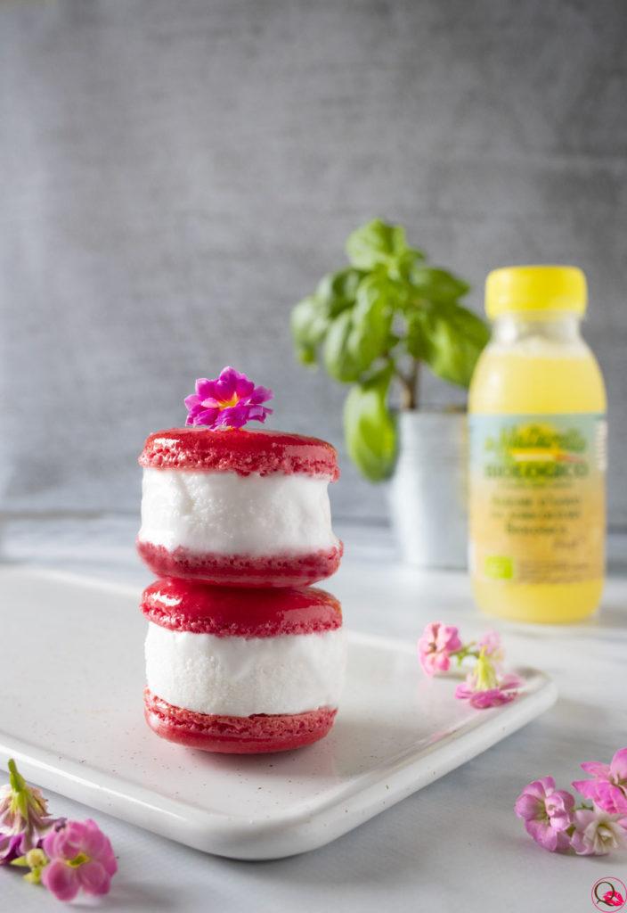 macarons-gelato-alla-vaniglia